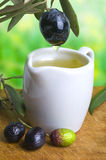 Tasting olive oil Stock Image