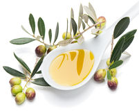 Tasting olives and virgin olive oil Stock Image