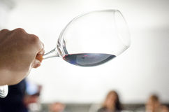 Tasting red wine. Special large red wine glass- checking the color Stock Images