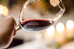Tasting red wine. Special large red wine glass- checking the color Stock Photography