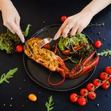 Tasting restaurant stuffed lobster dish Royalty Free Stock Photos