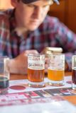Tasting samples from a beer flight and rating them. Young man tasting samples from a beer flight and rating them on an app Royalty Free Stock Photos