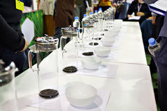 Tasting tea at the exhibition Royalty Free Stock Photo