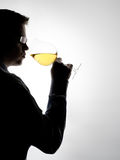 Tasting wine. Young expert sampling white wine royalty free stock photography