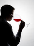 Tasting wine. Young expert sampling red wine stock photography
