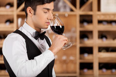 Tasting wine. Cropped image of confident young sommelier standing in front of shelf with wine bottles and keeping arms crossed Stock Images