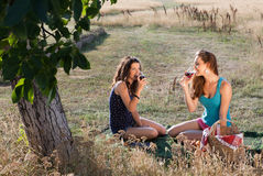 Tasting wine on a picnic. Wine tasting young women during a picnic in golden evening light Royalty Free Stock Images