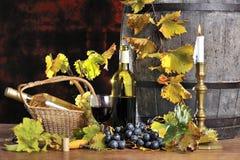 Tasting wine three Royalty Free Stock Images