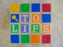 Tasto a vita Fotografia Stock Libera da Diritti