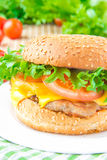 Tasty american lunch - cheeseburger with meat cutlet, cheese and Stock Image