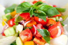Tasty And Fresh Vegetable Salad. Stock Images