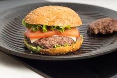 Tasty and appetizing hamburger cheeseburger Royalty Free Stock Photos