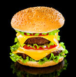 Tasty and appetizing hamburger Stock Photos