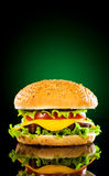 Tasty and appetizing hamburger on a darkly green Royalty Free Stock Image