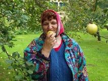 Tasty apple 2 Royalty Free Stock Image