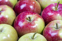 Tasty apples Stock Images