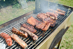 Tasty assortment of meat on a summer barbecue Stock Images