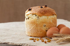 Tasty backed traditional russian kulich easter cake with raisins and eggs on vintage textile Royalty Free Stock Photos