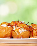 Tasty baked apples Stock Images