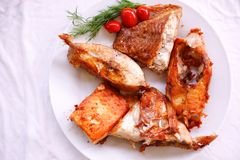 Tasty baked fish with cherry tomatoes and fresh Royalty Free Stock Photos