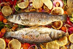 Tasty baked fish with vegetable garnish,. Top view Royalty Free Stock Image