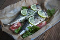 Tasty baked whole sea fishes on baking paper. Baked sea bream with lemon, herbs, tomatoes, spices on woode rustic background. Gril stock images