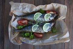 Tasty baked whole sea fishes on baking paper. Baked sea bream with lemon, herbs, tomatoes, spices on woode rustic background. Gril stock photography