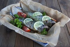 Tasty baked whole sea fishes on baking paper. Baked sea bream with lemon, herbs, tomatoes, spices on woode rustic background. Gril royalty free stock photos