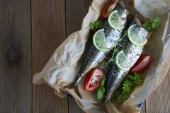 Tasty baked whole sea fishes on baking paper. Baked sea bream with lemon, herbs, tomatoes, spices on woode rustic background. Gril royalty free stock photography