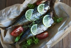Tasty baked whole sea fishes on baking paper. Baked sea bream with lemon, herbs, tomatoes, spices on woode rustic background. Gril royalty free stock images