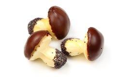 Tasty baking mushrooms Stock Photography