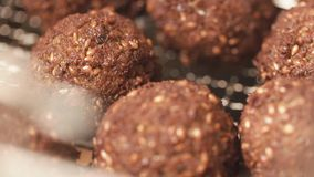 Tasty balls of forcemeat with brown crust stock video footage
