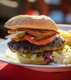 Tasty beef hamburger Stock Images