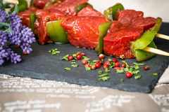Tasty beef steak kabobs with vegetables Royalty Free Stock Image