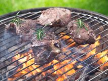 Tasty beef steaks on the grill. Tasty beef steaks on the grill, close-up Stock Images