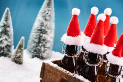 Tasty beer bottles for winter party Stock Photos