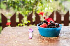 Tasty berries on the table stock photos