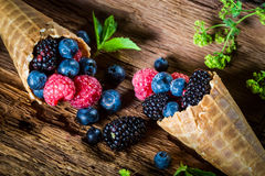 Tasty berry fruits ice cream in waffels as concept. On old bark stock photos