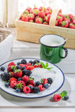 Tasty berry fruits with yogurt Stock Photography