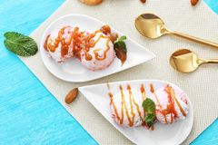 Tasty berry ice-cream with caramel topping on plate. S, top view Stock Images