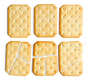 Tasty biscuits isolated Royalty Free Stock Photography