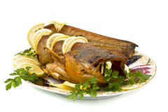 Tasty bloated sheatfish with lemon and parsley Royalty Free Stock Photography