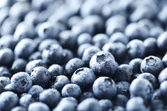 Tasty blueberries Stock Images