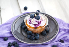 Tasty blueberry cupcake on plate Stock Photos
