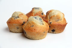 Tasty Blueberry Muffins Stock Photography