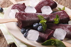 Tasty blueberry popsicles on a stick macro on a plate. horizonta Royalty Free Stock Images
