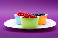 Bowl Of Summer Berries. Assorted berries on a plate on pink background Stock Images
