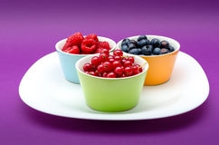 Tasty blueberry, redcurrant and raspberries Royalty Free Stock Photography