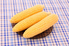 Tasty boiled    corn Stock Image