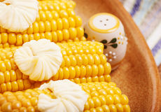 Tasty boiled corncob Stock Image
